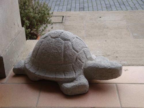 statua tartaruga scalpellino Bracciano